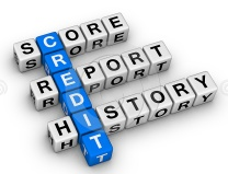 Credit Repair Puzzle